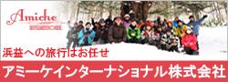 アミーケ・インターナショナル株式会社