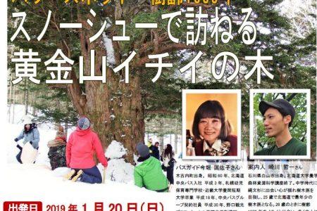(終了)【ツアー募集】1月20日(日)「樹齢1500年!イチイの木を目指すスノーシューツアー」